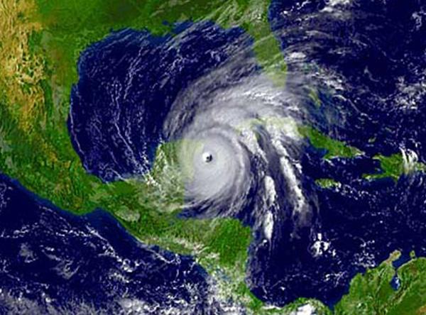 Hurricane Wilma: Surviving the Scare